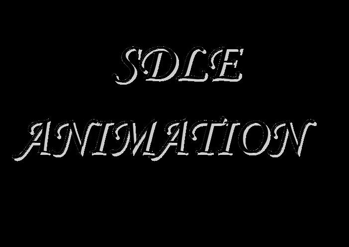 SDLE Animation – Animation micro et organisation d'évènements